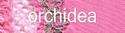 86153-orchidea